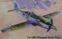 Самолет FW 190D-9 Papagei Staffeln