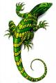 Lizard аватар